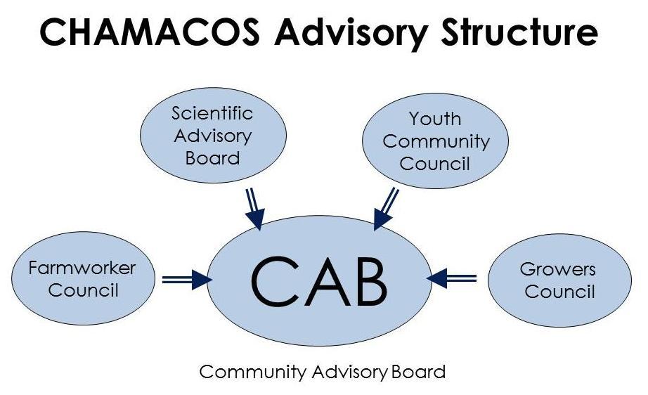 CHAMACOS Advisory Structure